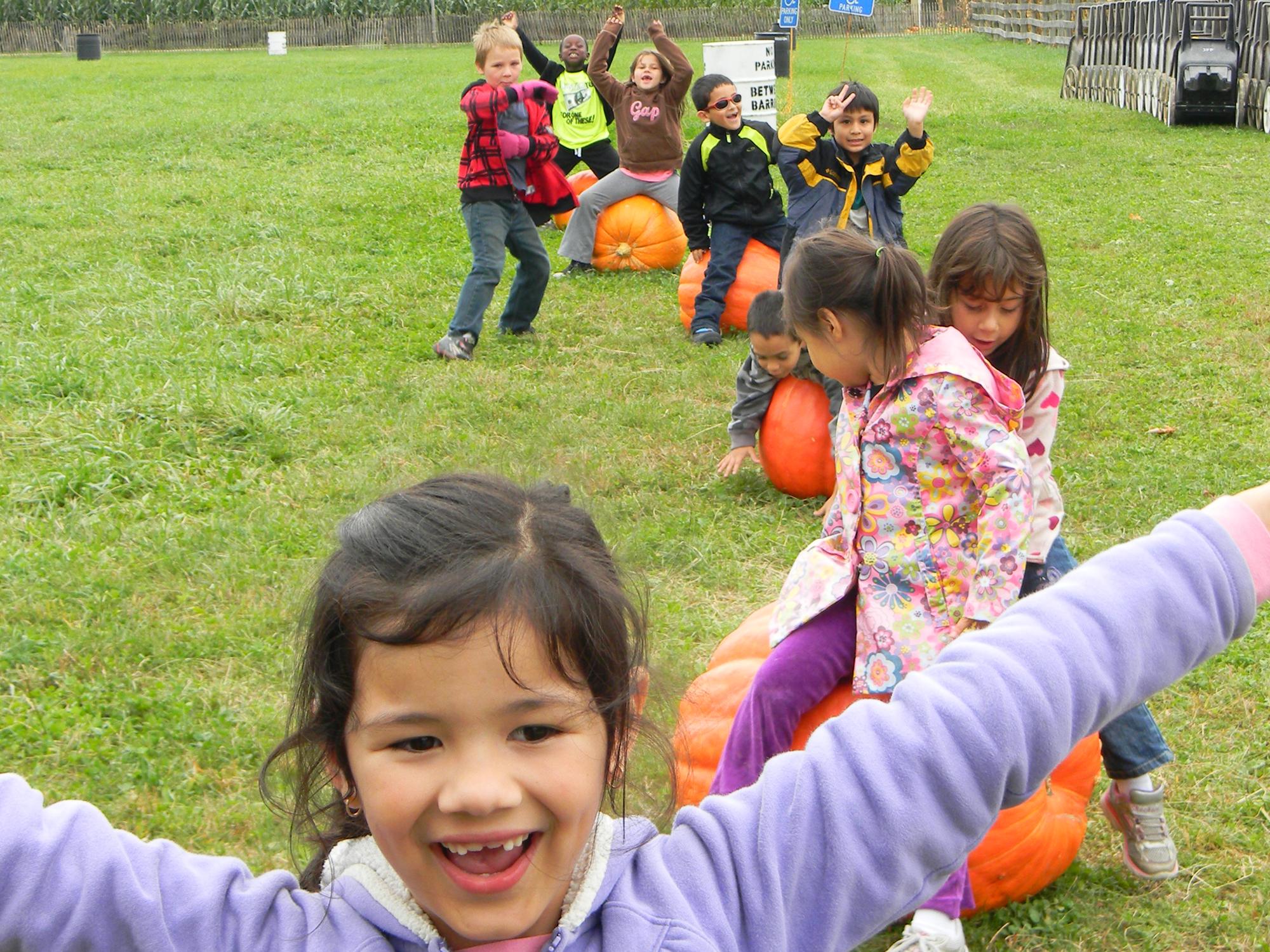 K-2nd grade field trip to Jones Family Farm.