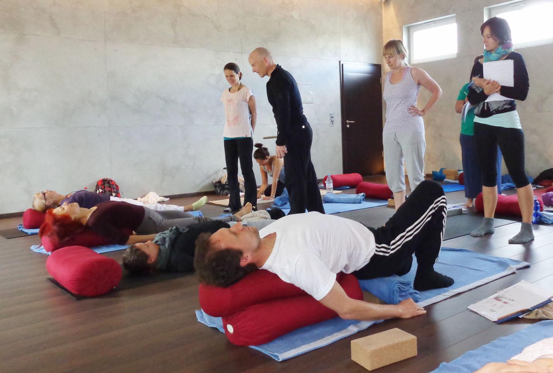 Yin Yoga & Anatomie Teacher Training I in Roth