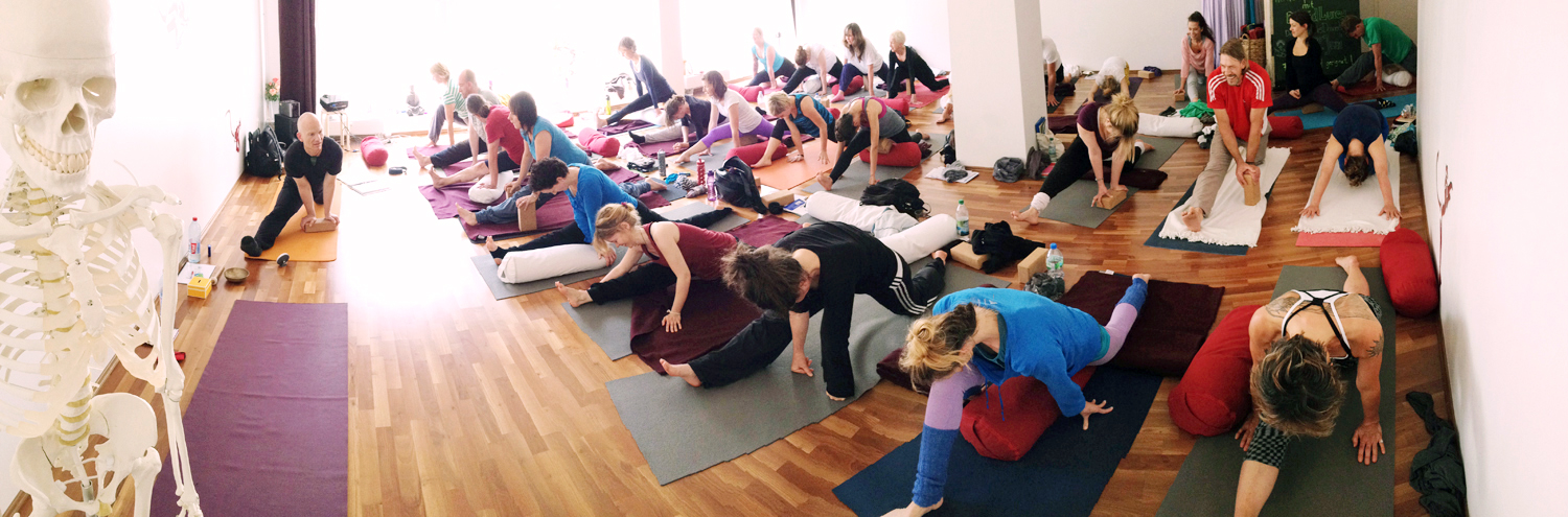 Yin Therapy - Yin Yoga Teacher Training Hamburg.jpg