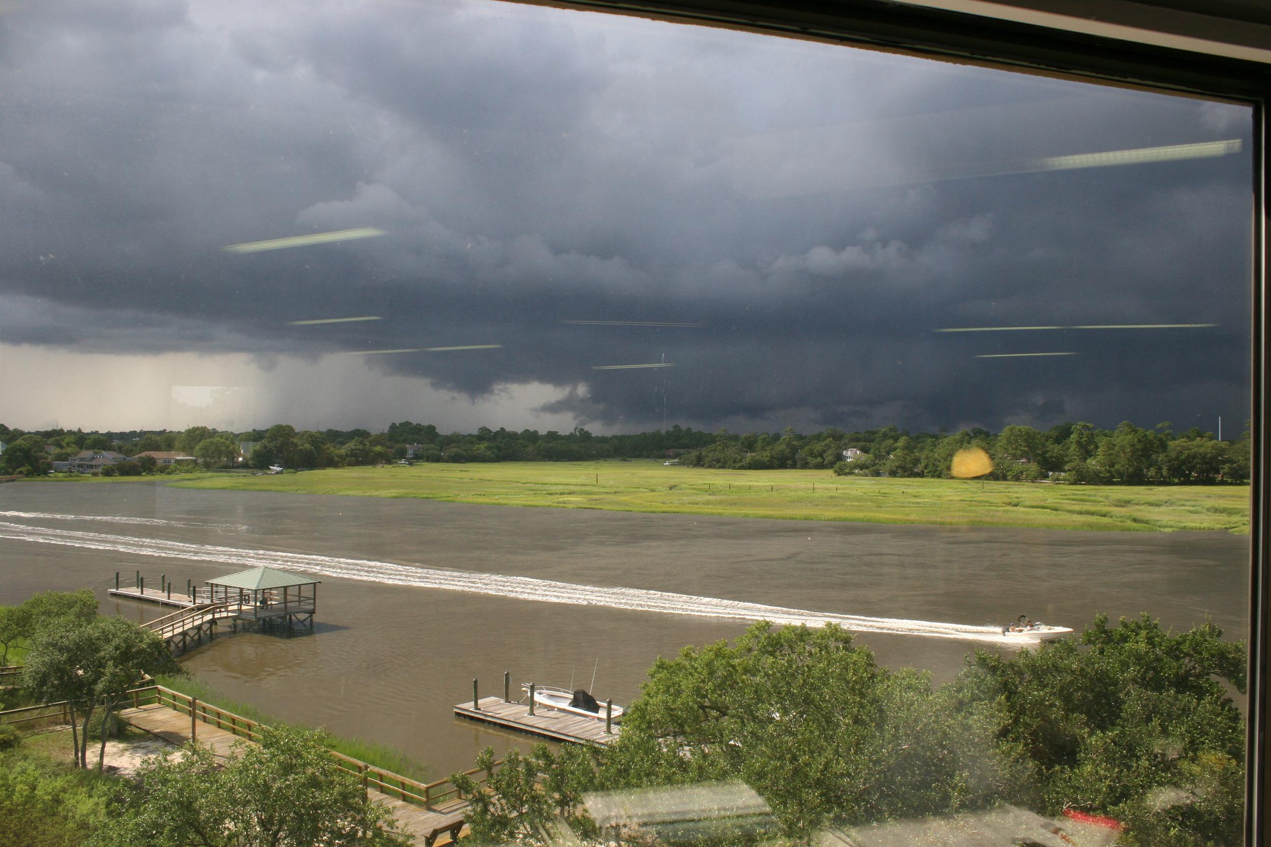 outside our window.JPG
