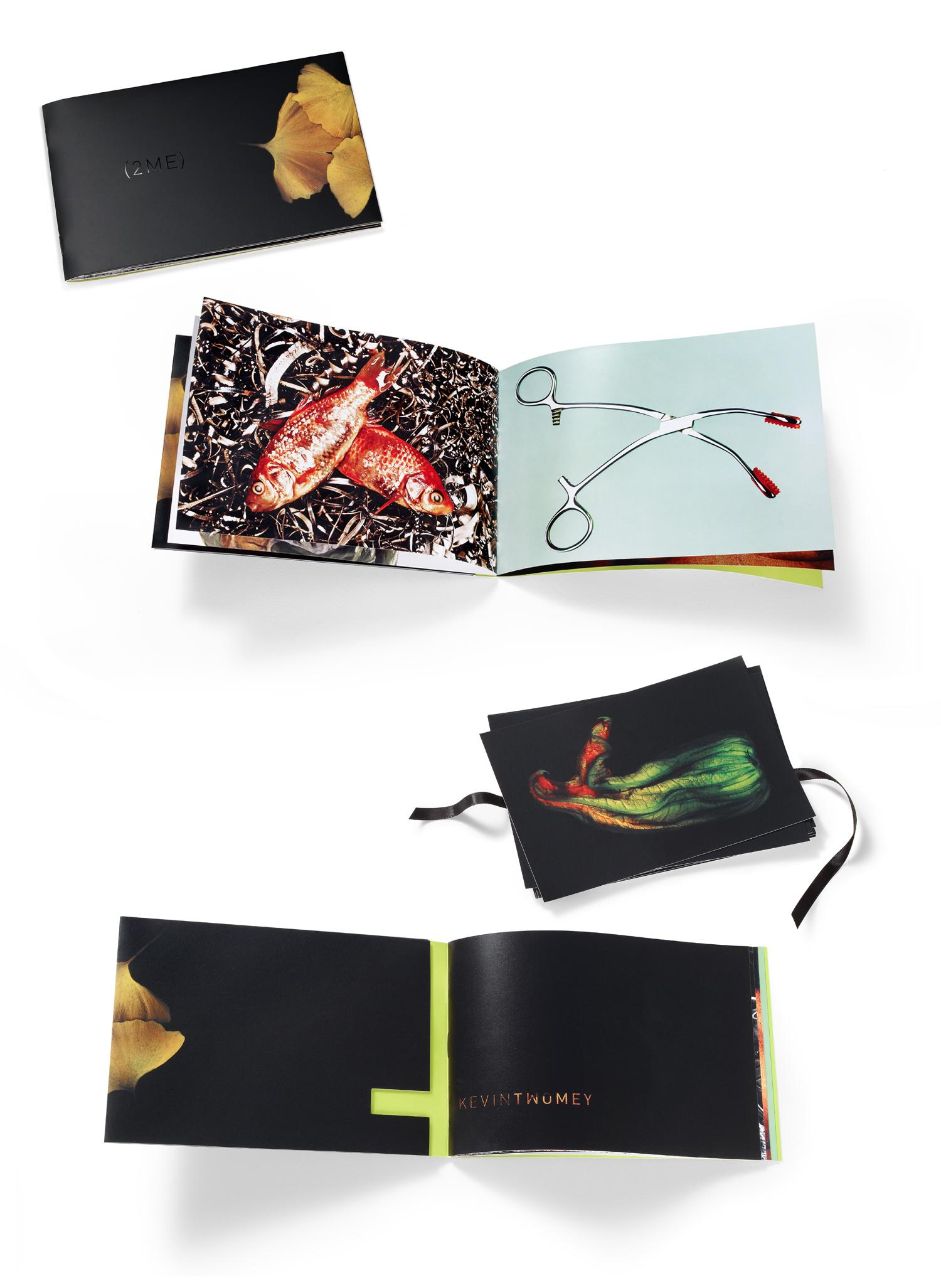 2me_book.jpg