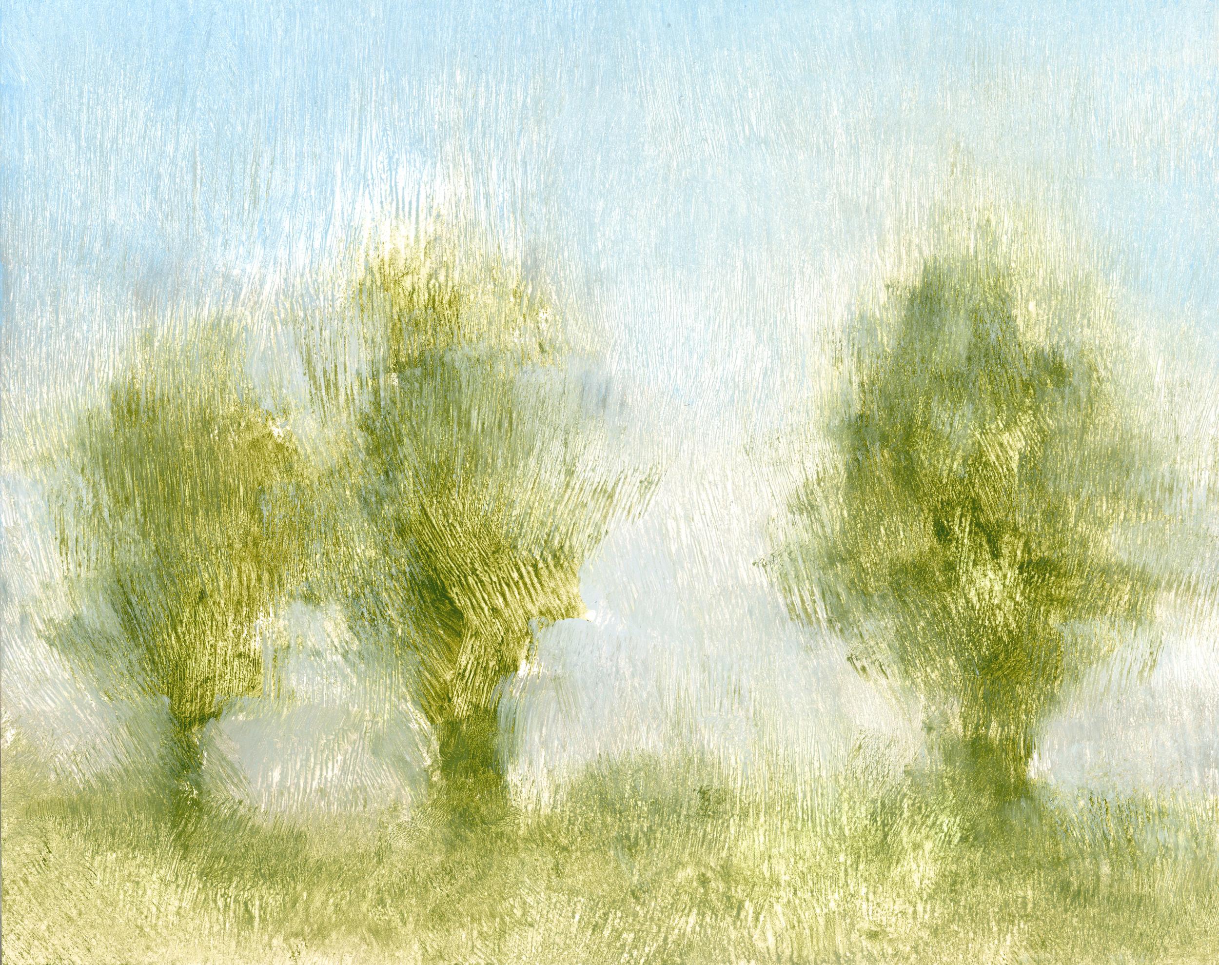 Glenn-Suokko-Landscape-911.jpg