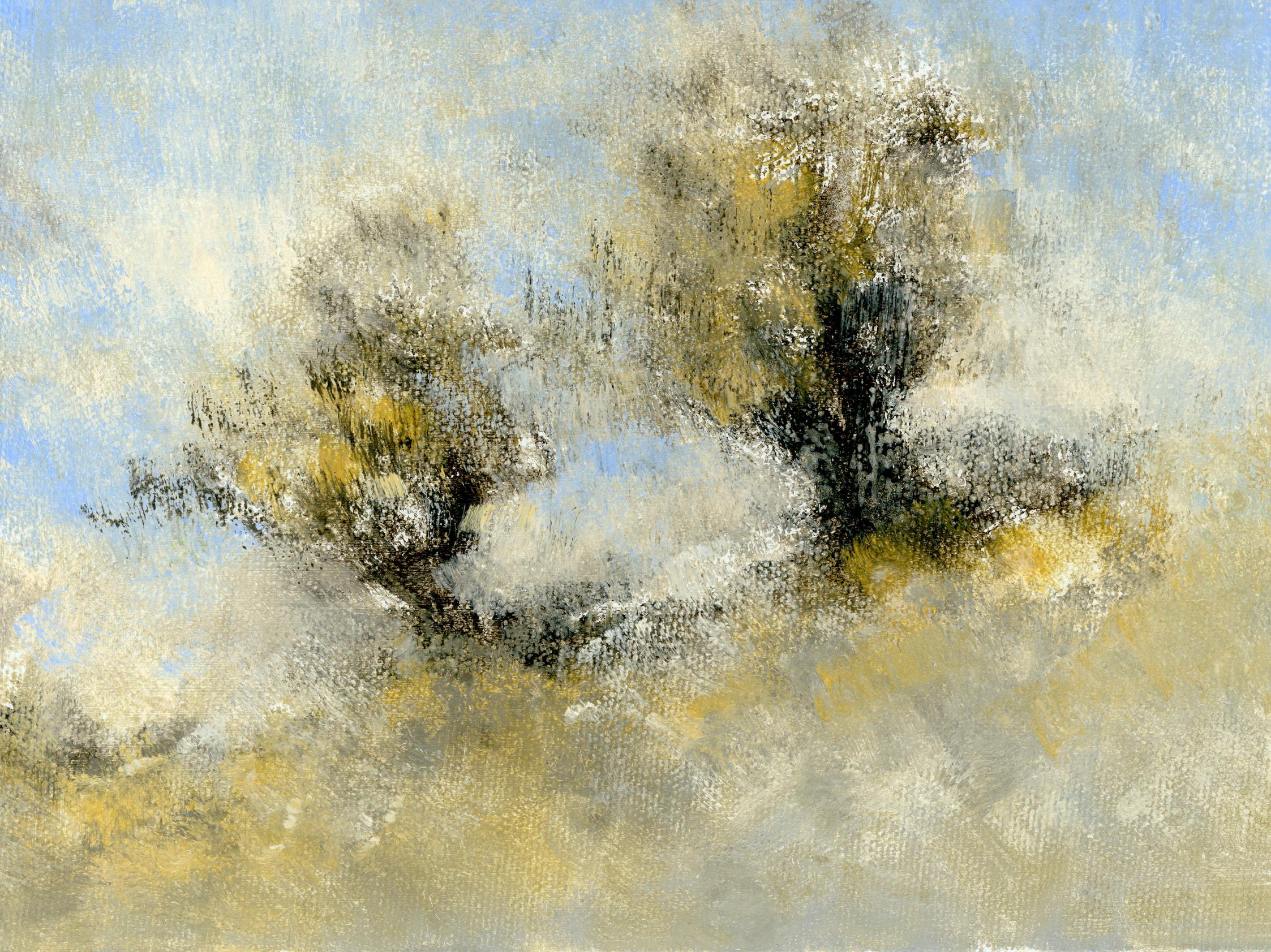 Glenn-Suokko-Landscape-914-2.jpg