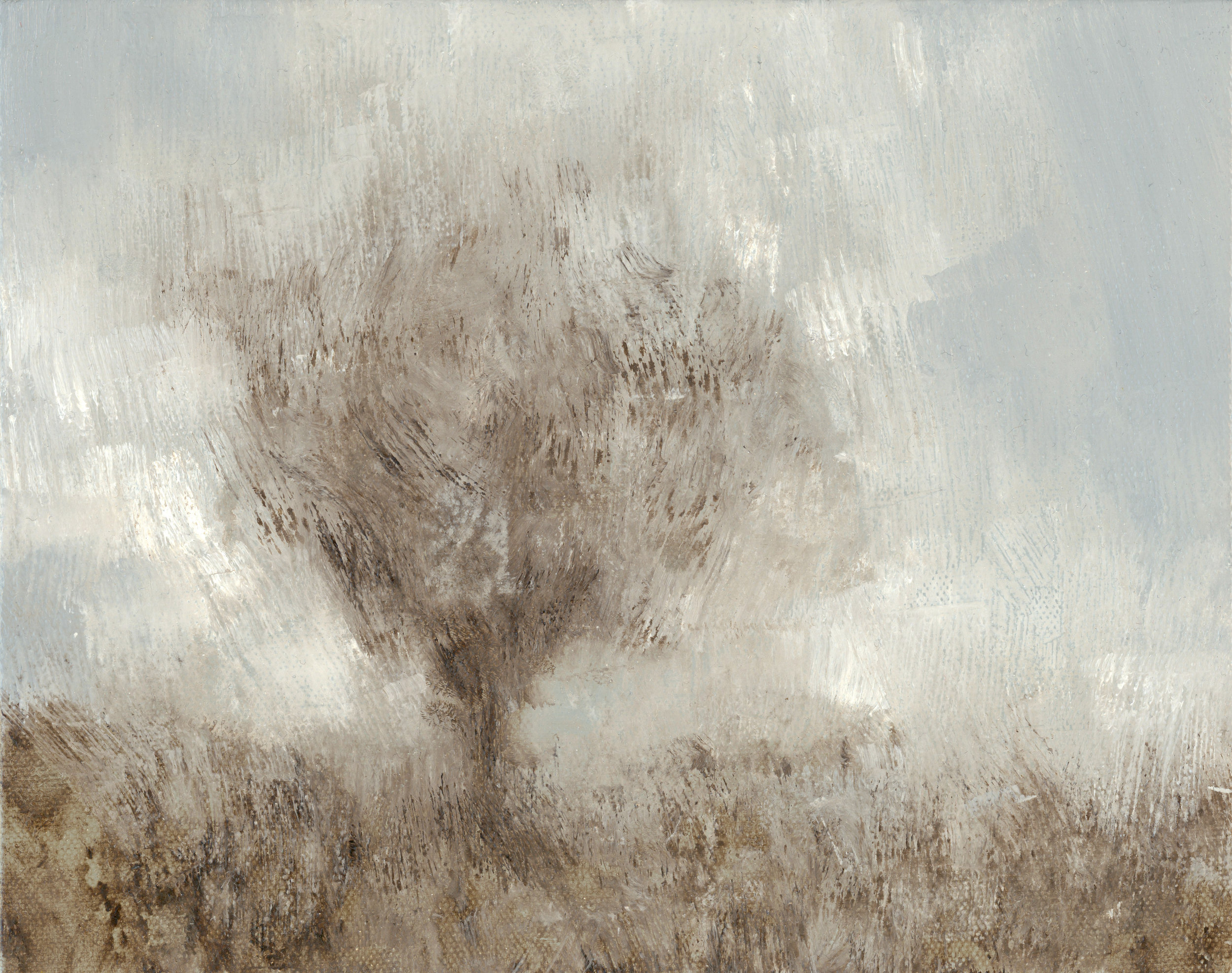 Glenn-Suokko-Landscape-902.jpg