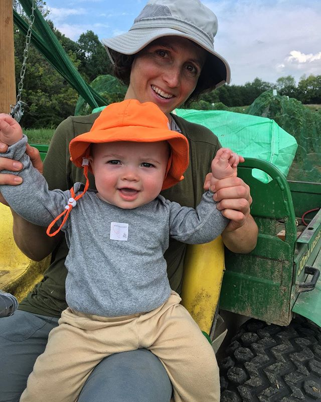 Kai's first day of vineyard work: helping @claverach_sam apply bird netting. Hot one today too. #claverachfarm #farmbaby #missouriwine #naturalwine