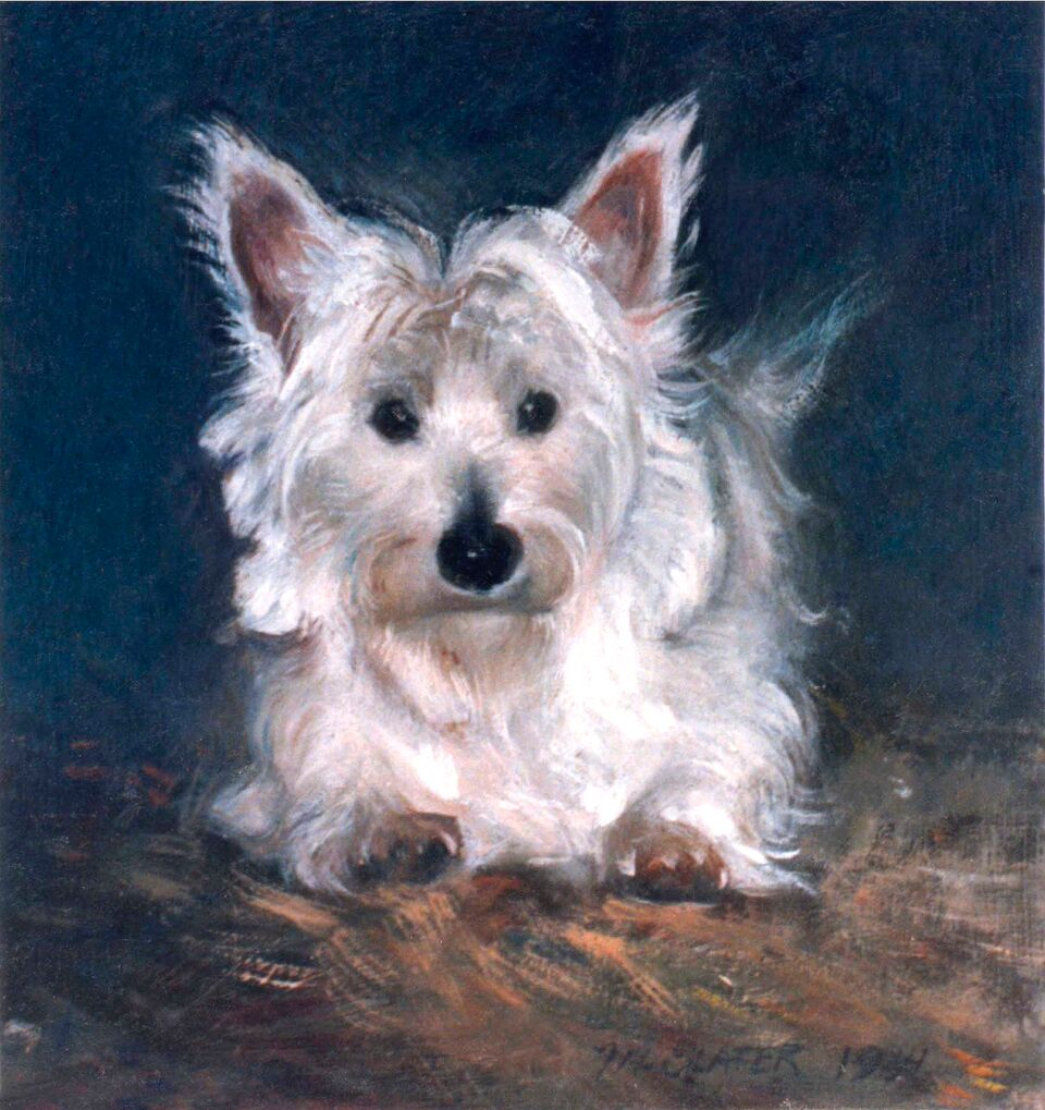 West.Highland.terrier.light_preview.jpeg