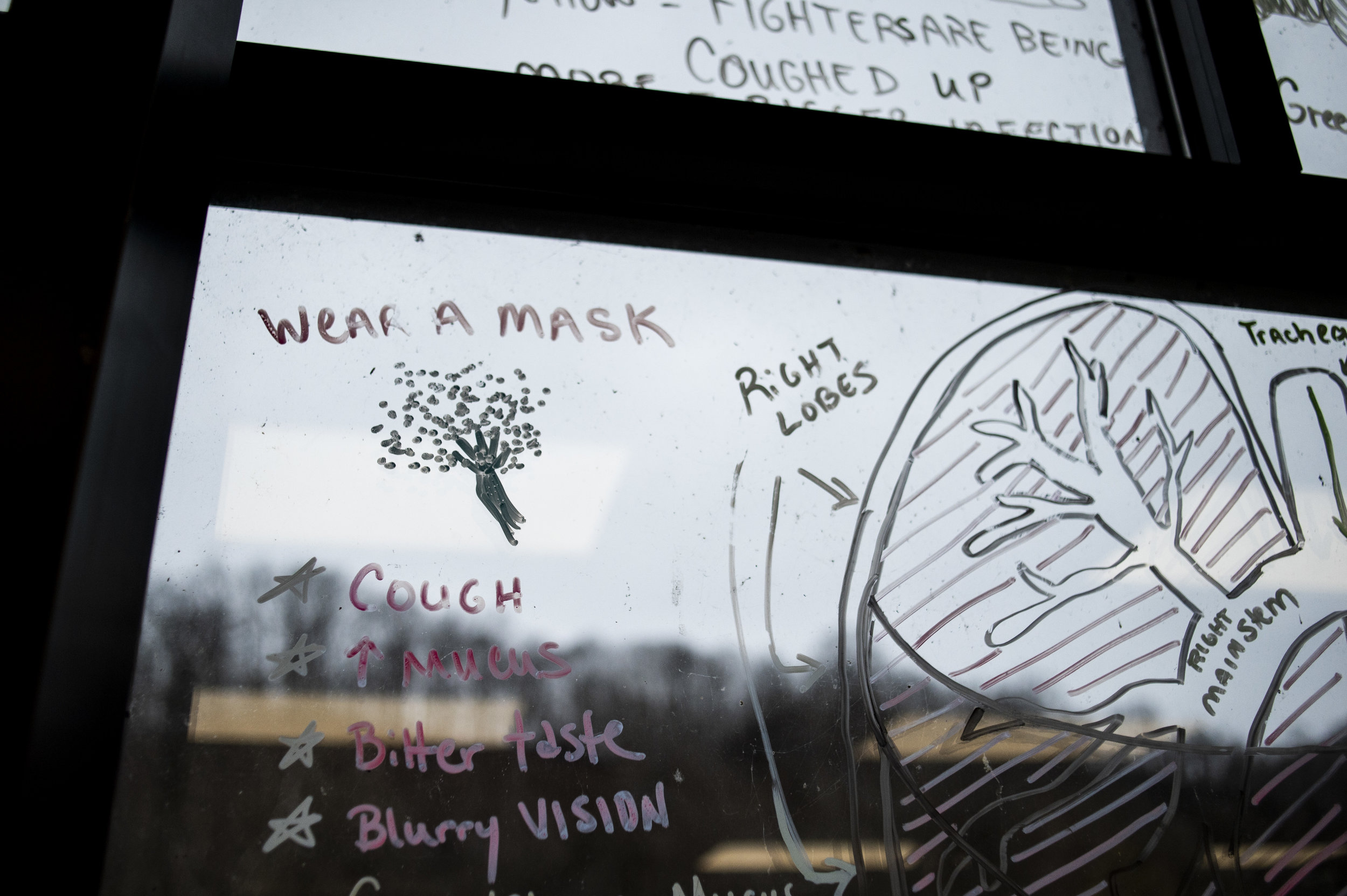 Drawings and information about lung health and Black Lung Disease cover the windows of the New Beginnings Pulmonary Rehab Clinic in South Williamson, Kentucky.