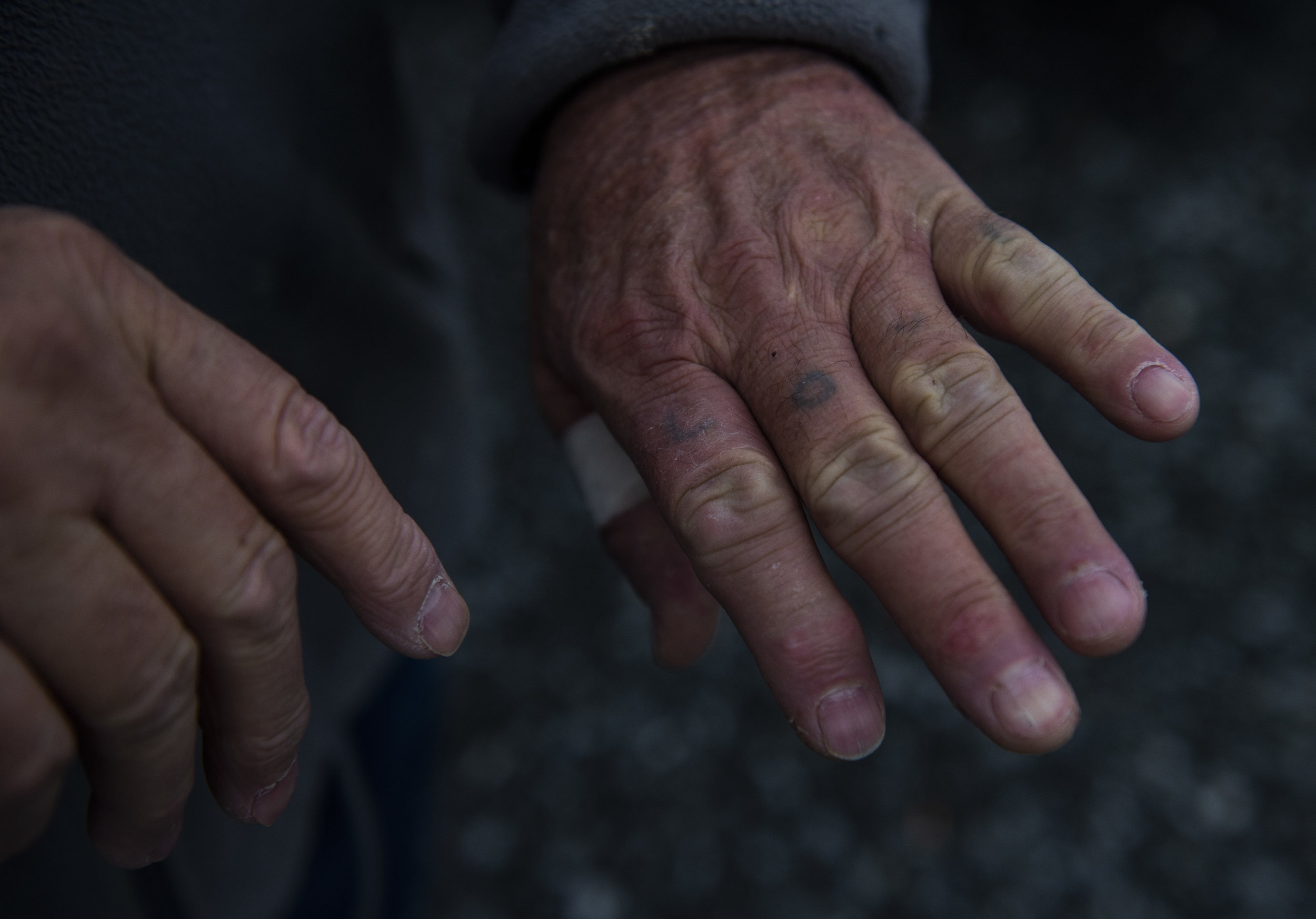 The well worked and worn hands of Charles Shortridge, a fading tattoo reading 'LOVE' stretches across his knuckles.