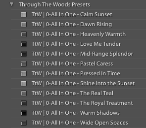 ALL IN ONE PRESETS