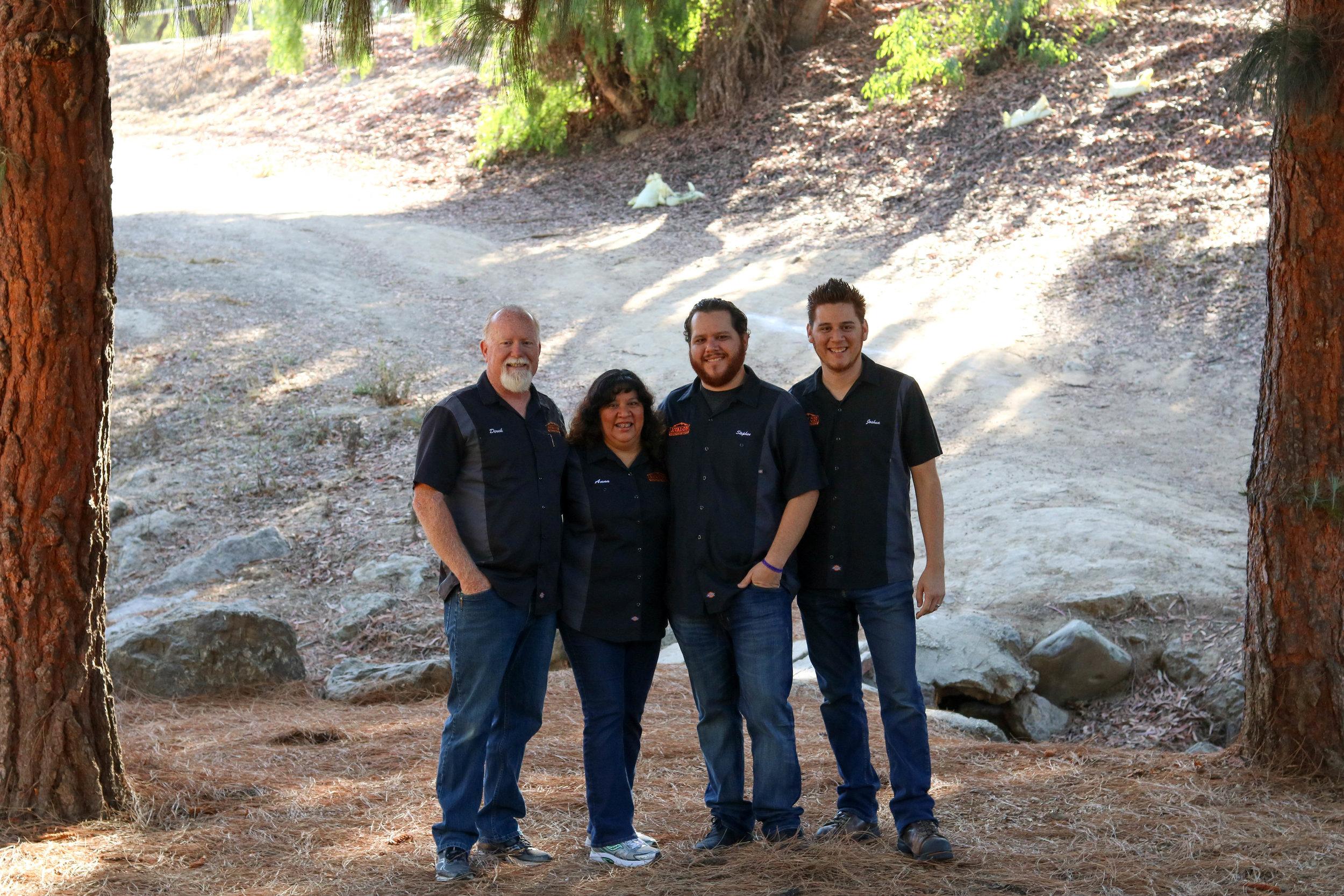 The Avalon Team