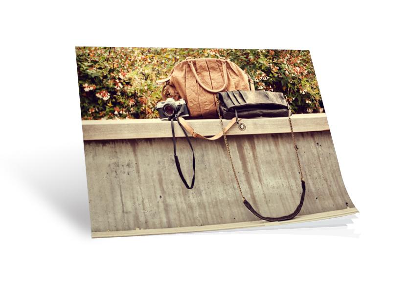 Sienna Ray Picnic Affair // Lookbook