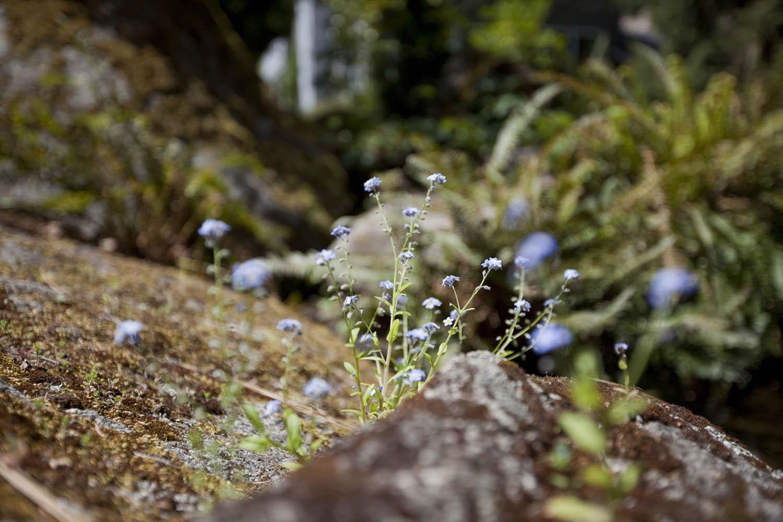 Granite_0029_web.jpg