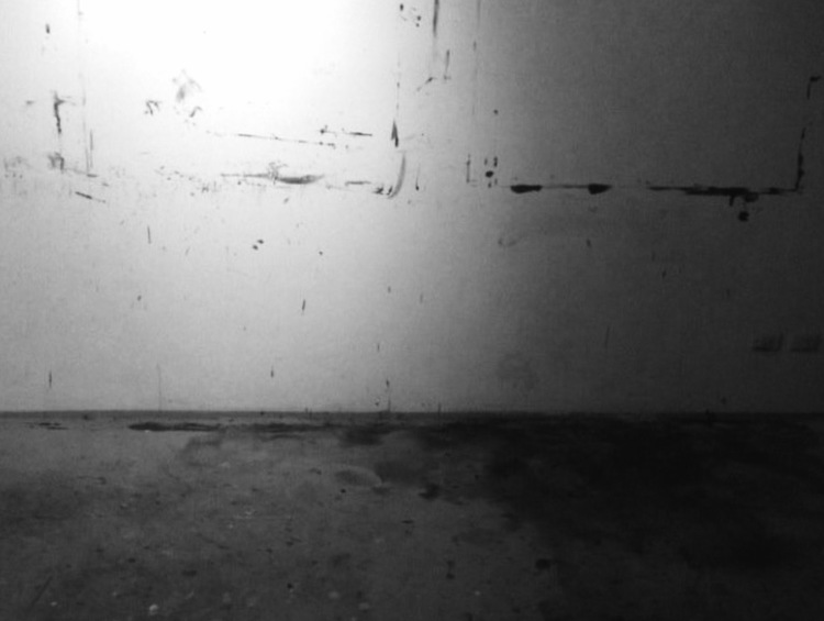 Home Studio, 2011