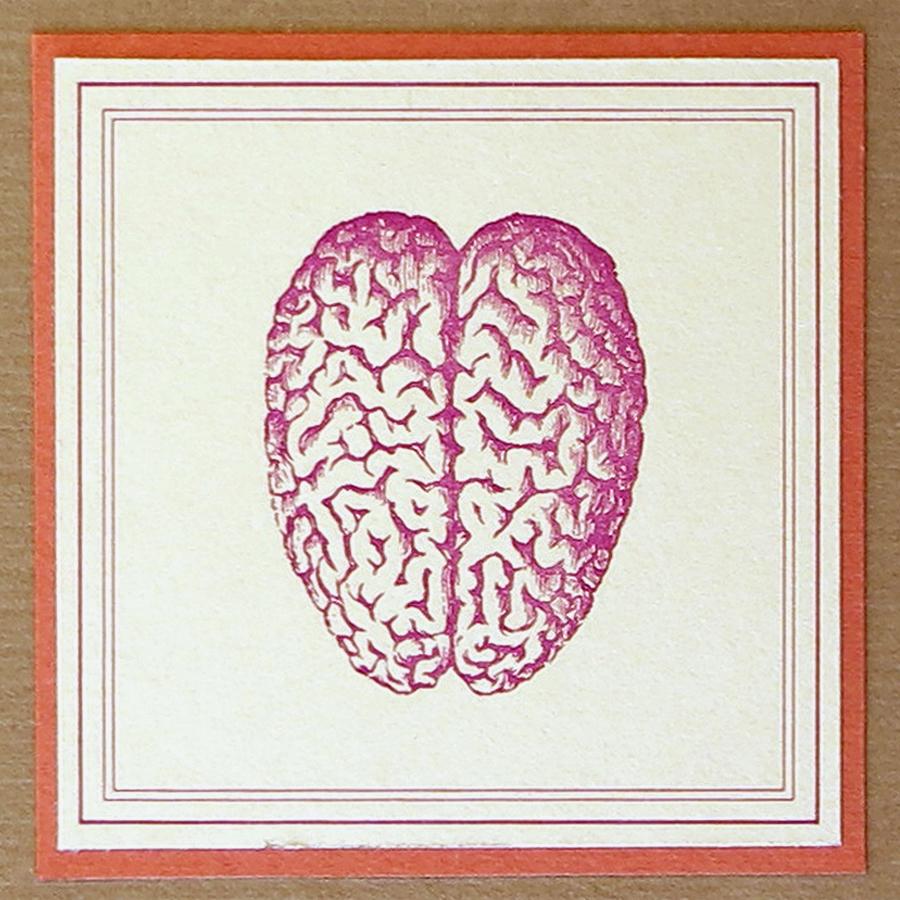 McBain brain label WEB 1500 IMG_1063.jpg