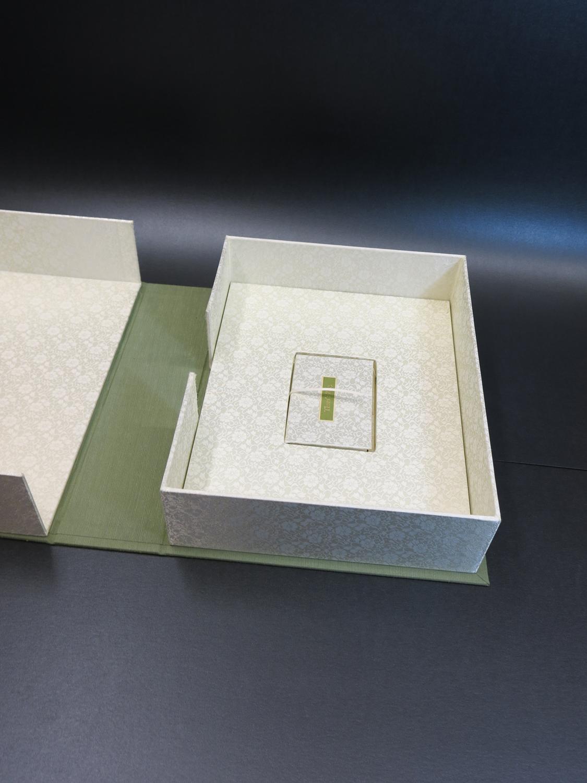 box view IWEB 1500.jpg