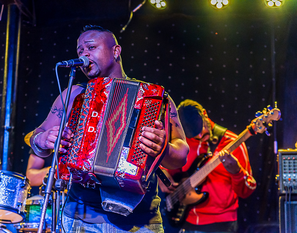 Zydeco Performer