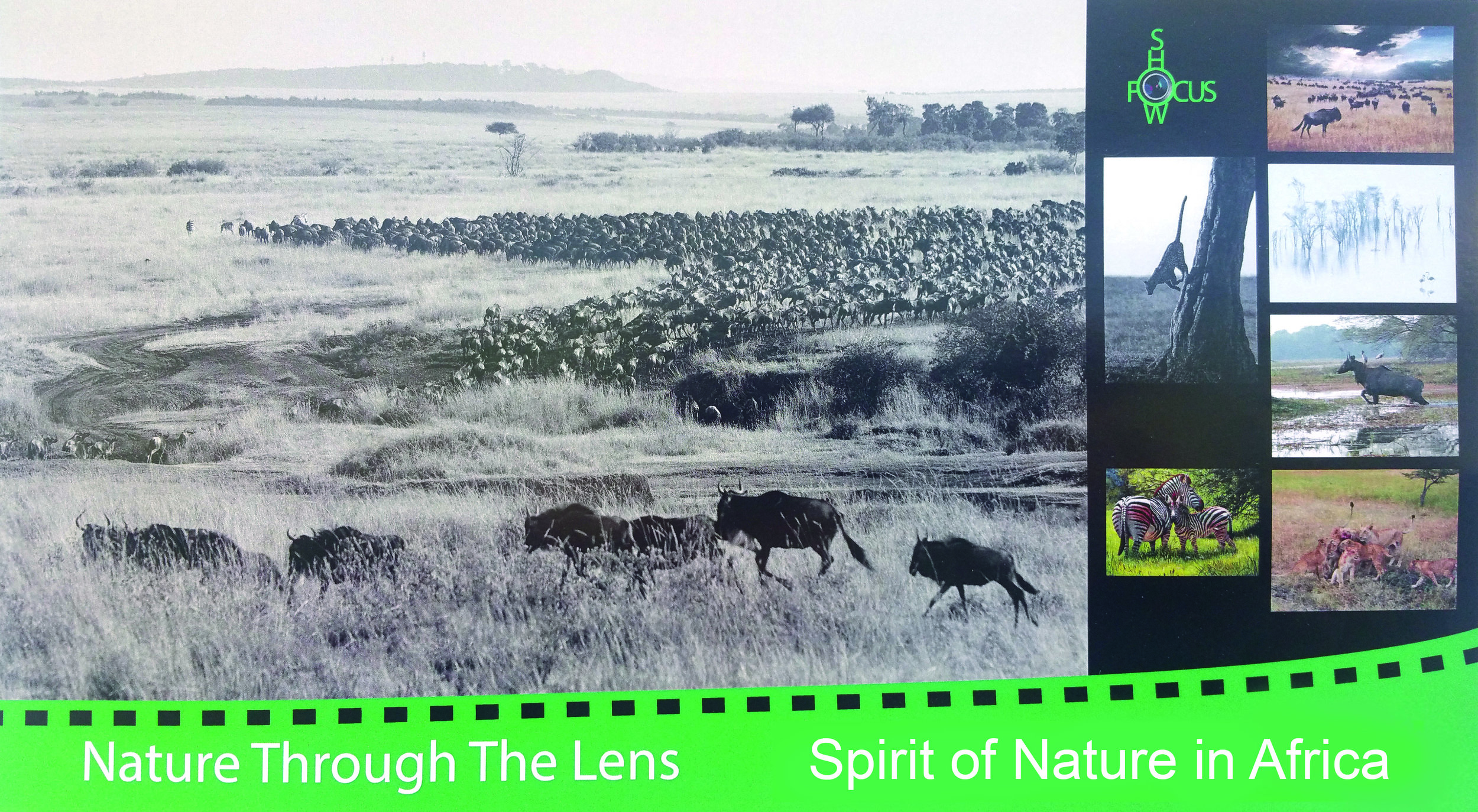 Postcard_Spirit_of_Nature_in_Africa_front_20180130_OGM.jpg