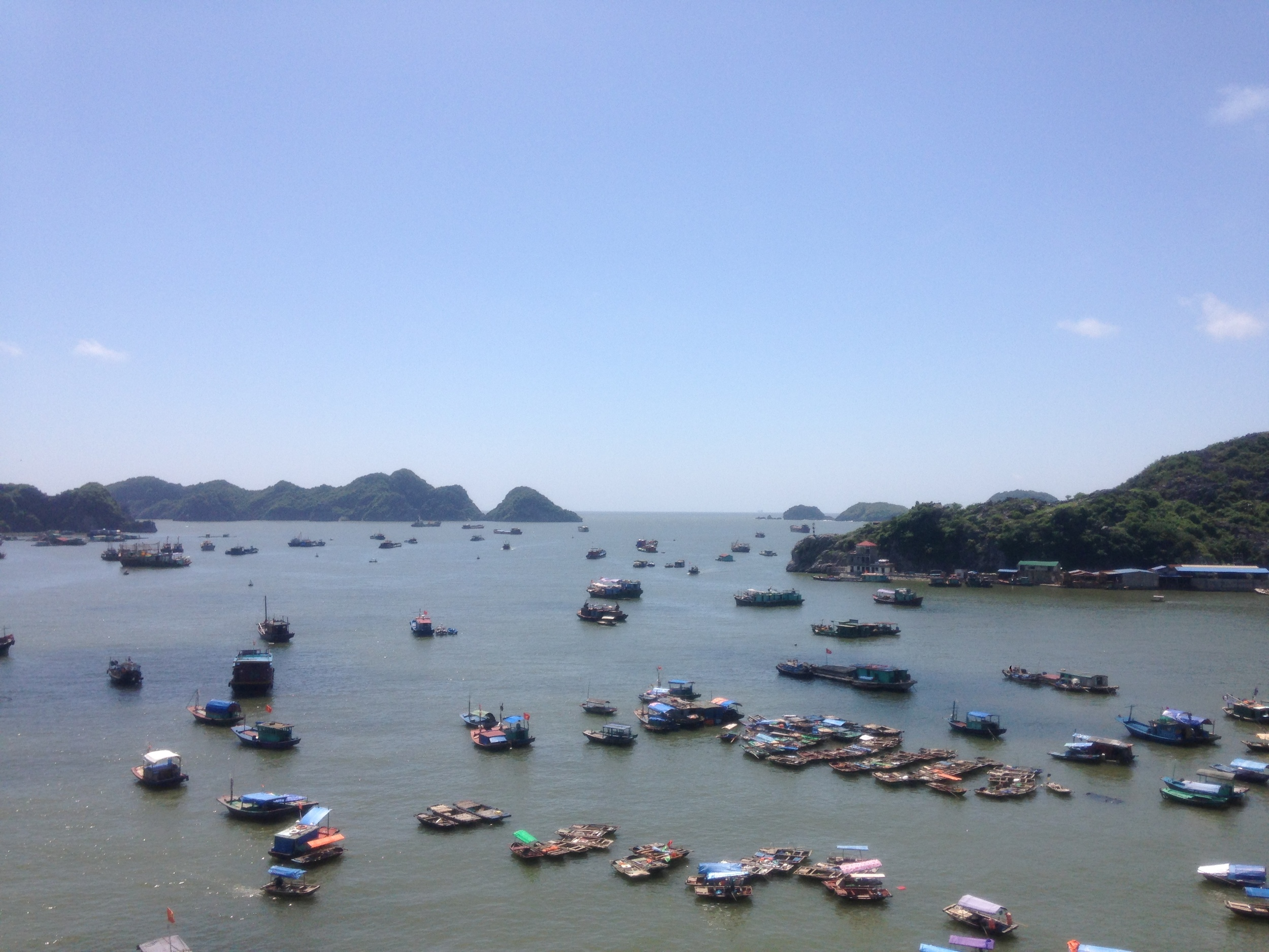 The Cat Ba harbor