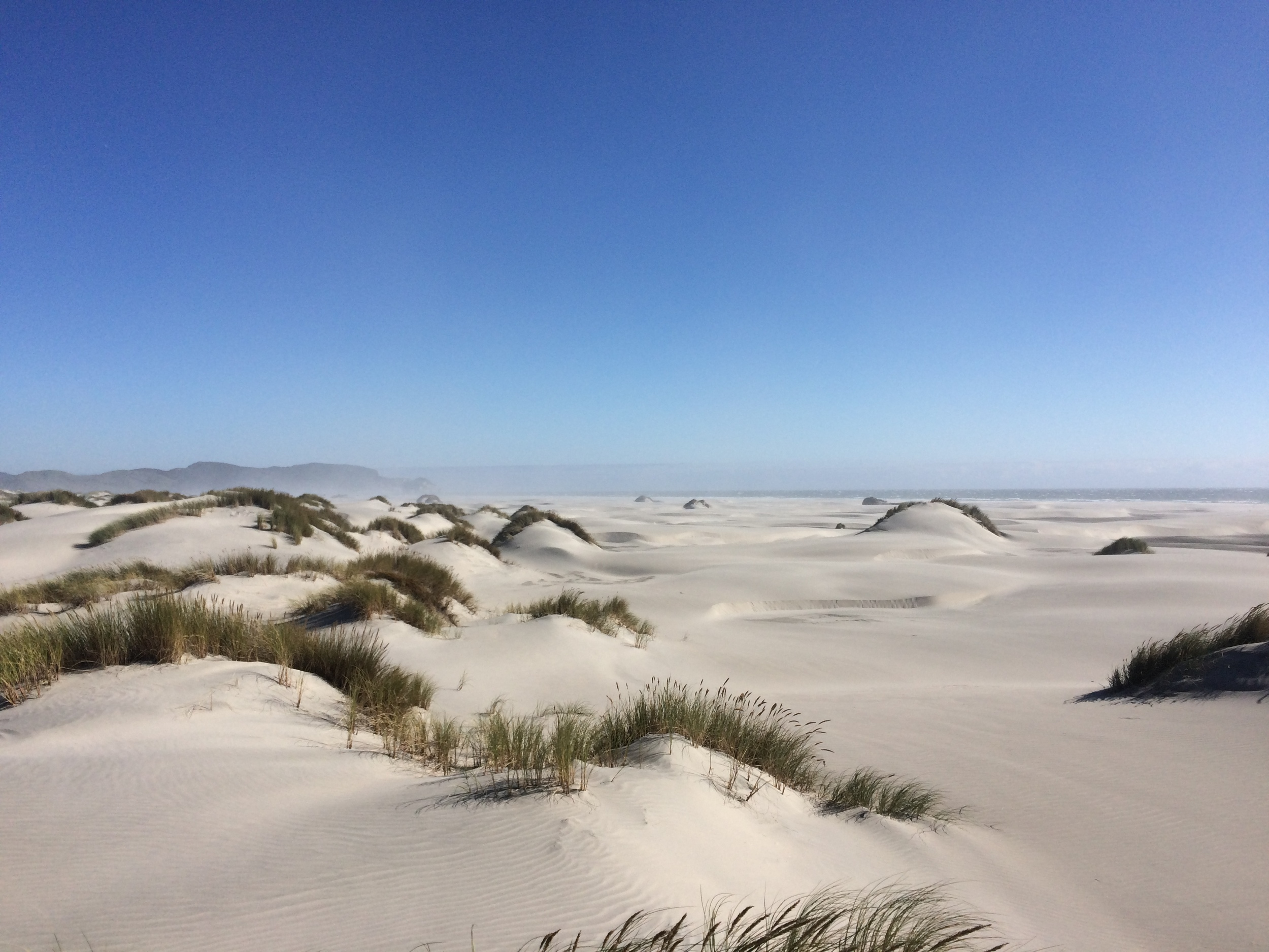 Sand dunes at Cape Farewell