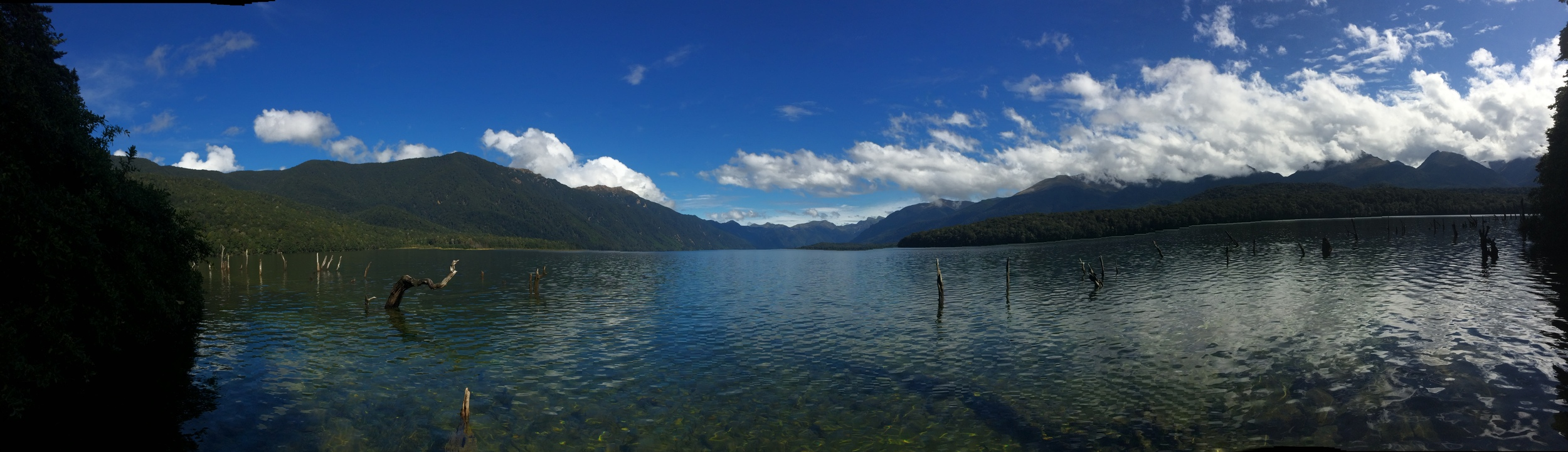 Taking a dip in Lake Monowai