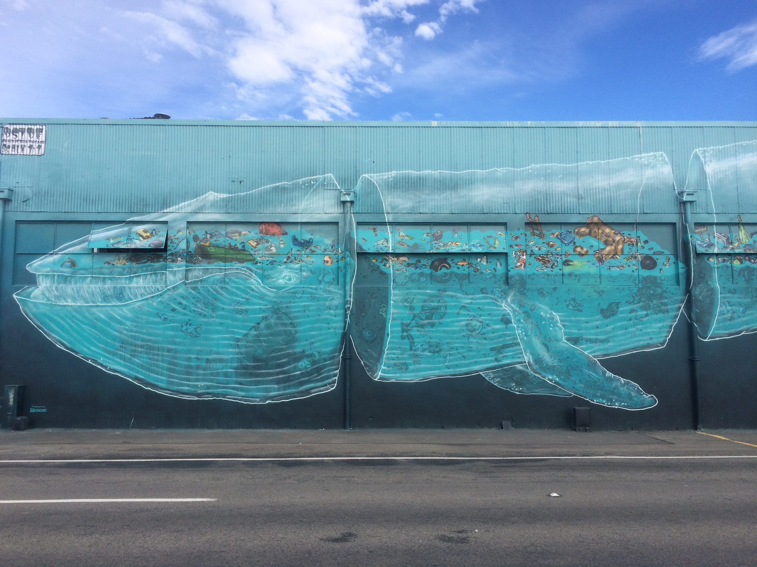 Napier Sea Art