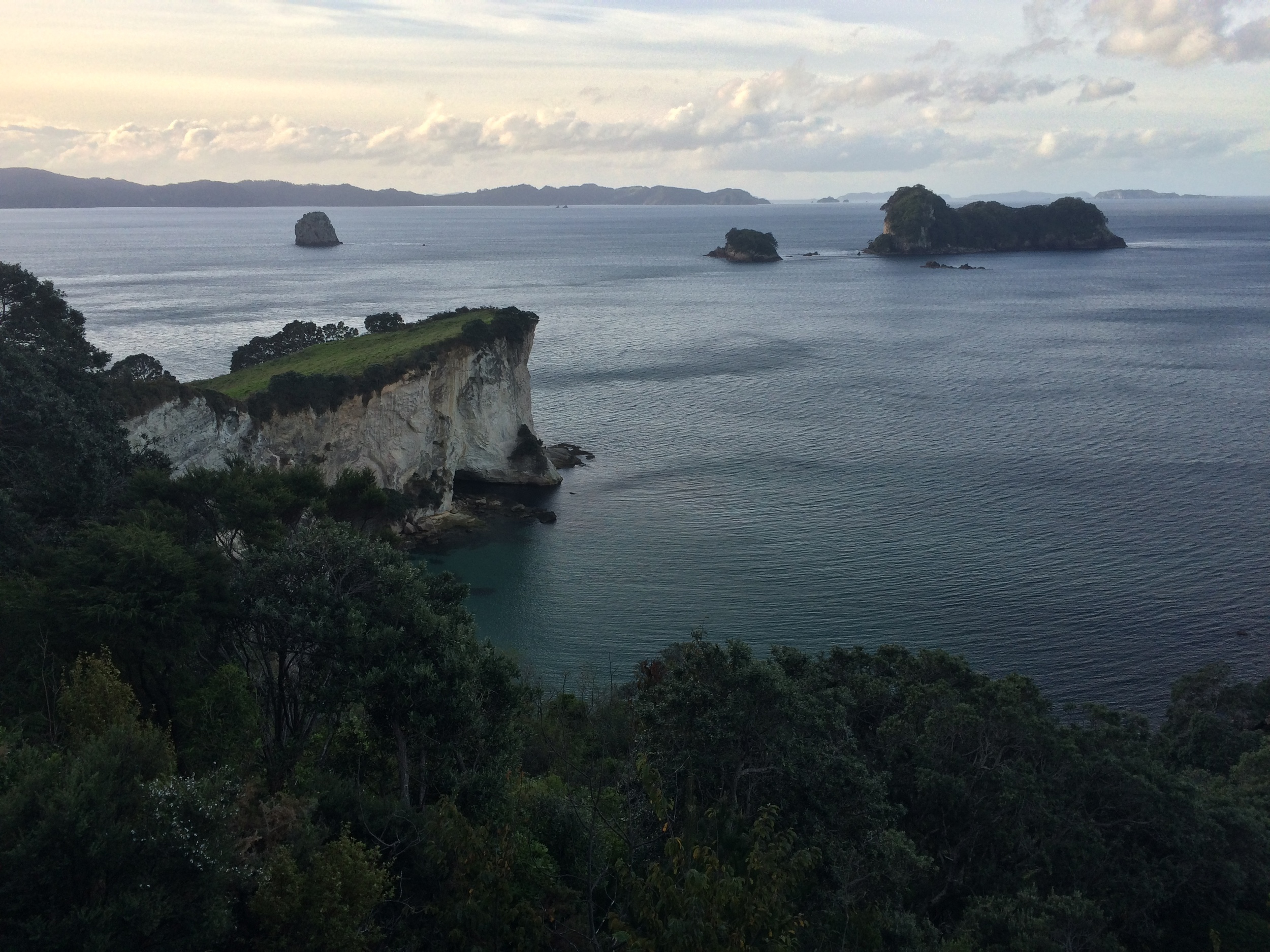 Lookout along the Coromandel