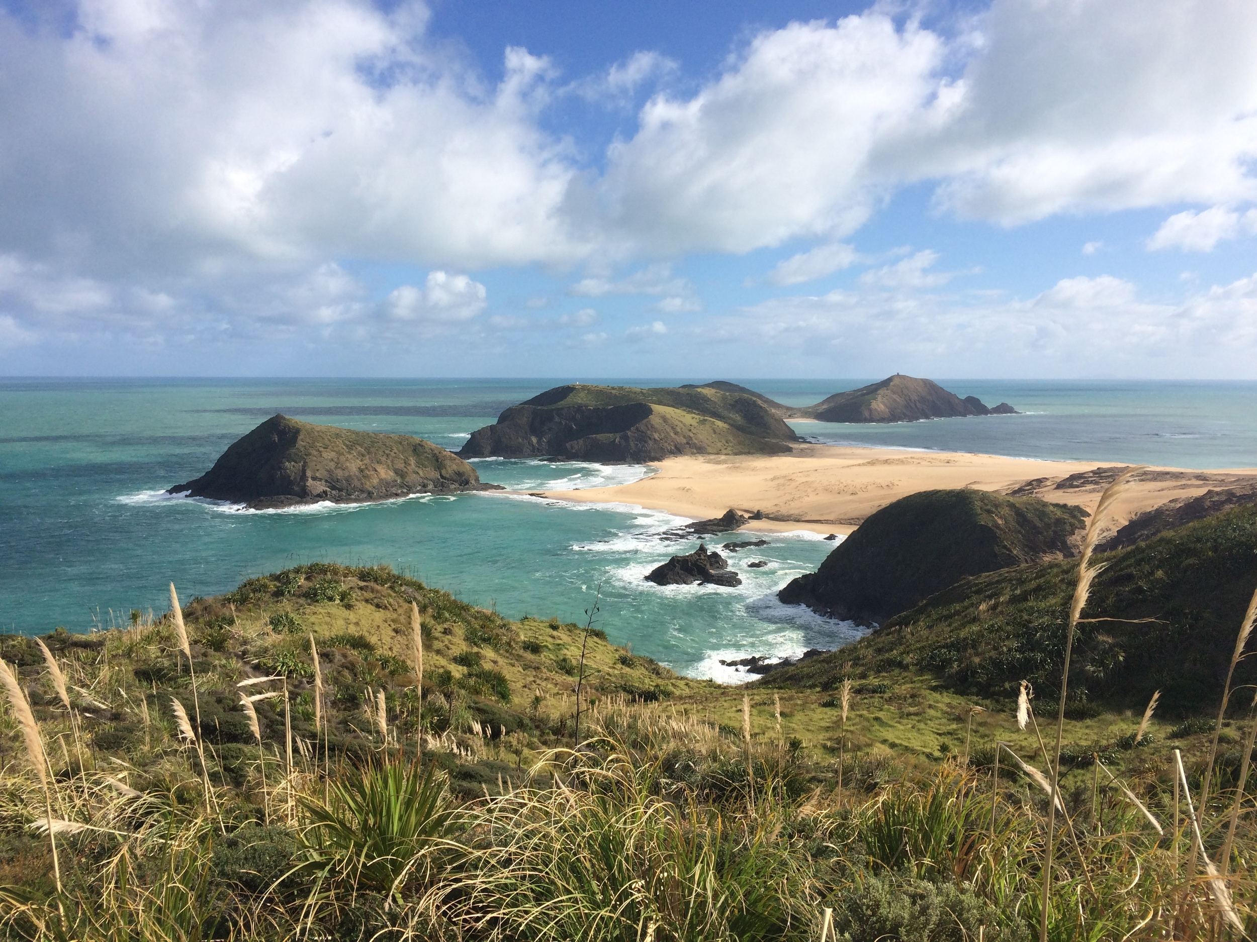 Hiking from Cape Reinga to 90-Mile Beach