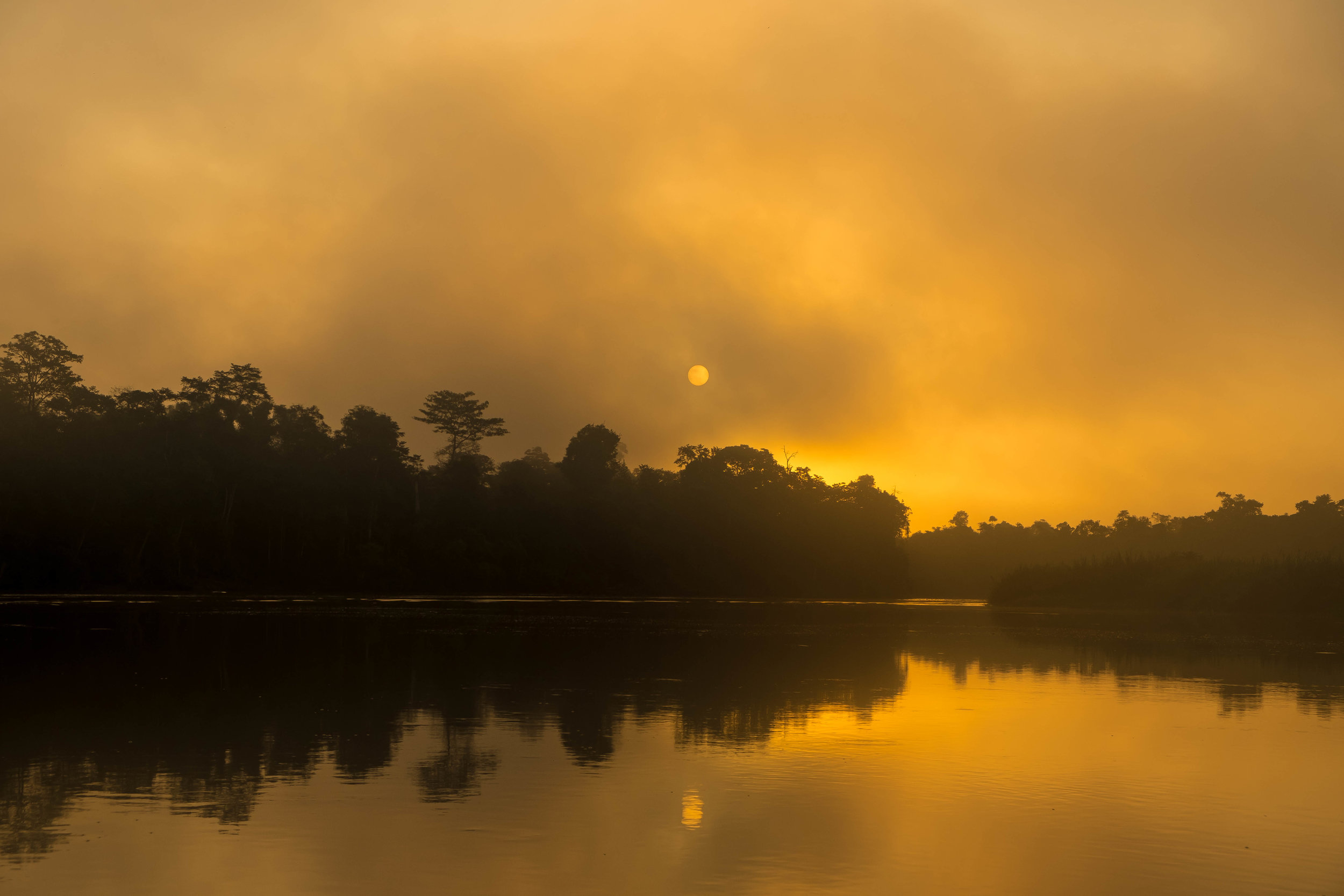 Sunrise through the fog on the Kinabatangan River