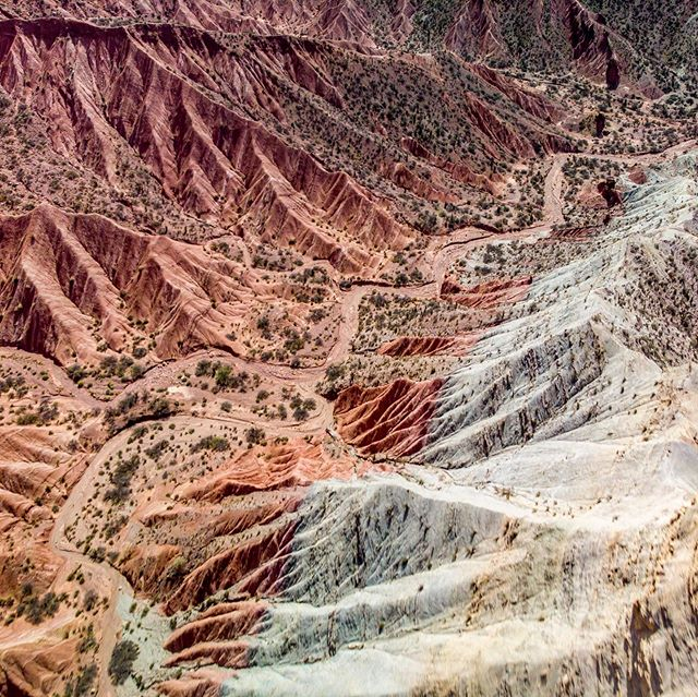 Hiking through the beautiful red rocks in Tupiza. Sometimes you feel like you're on another planet 🌎. #bolivia #tupiza #redrocks #landscape #landscapephotography #travel #travelledworld #travelphotography #naturephotography #nature #hiking #backpacking #adventure #drone #dronestagram #dji #mavicair #mavic #drones #dronefeed #dronepals #droneglobe #dronesofearth #droneoftheday #aerial #aerialphotography