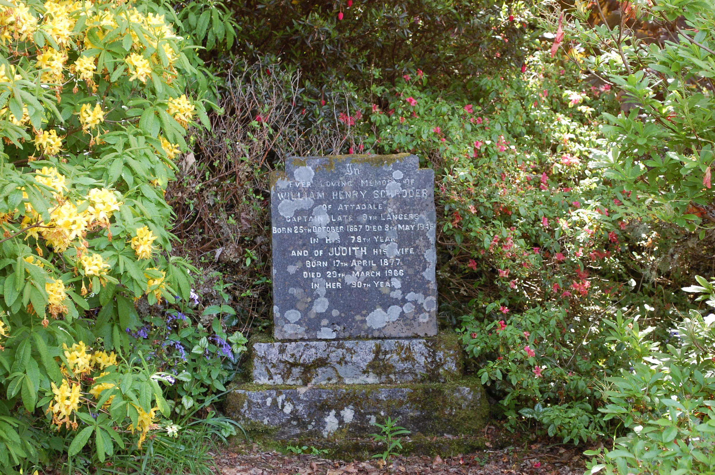 The Schroders Grave