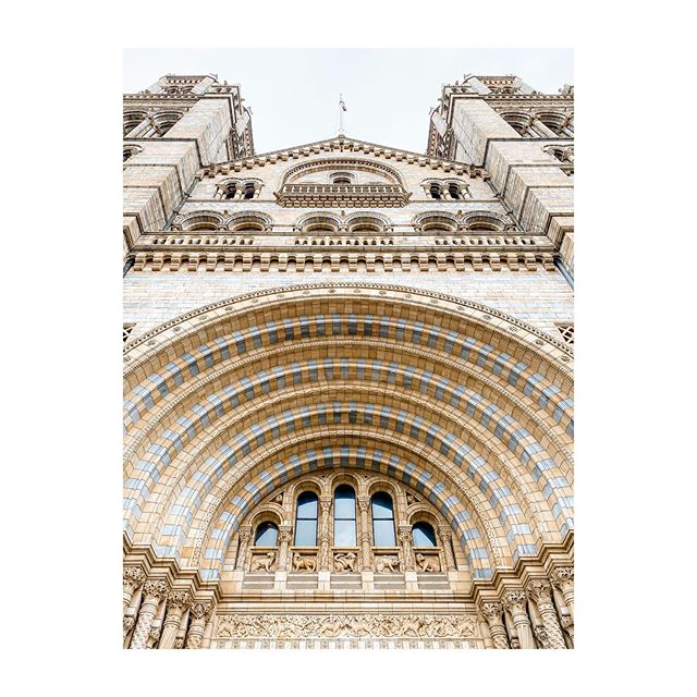 Stunning. #naturalhistorymuseumlondon #london #architecture #gb