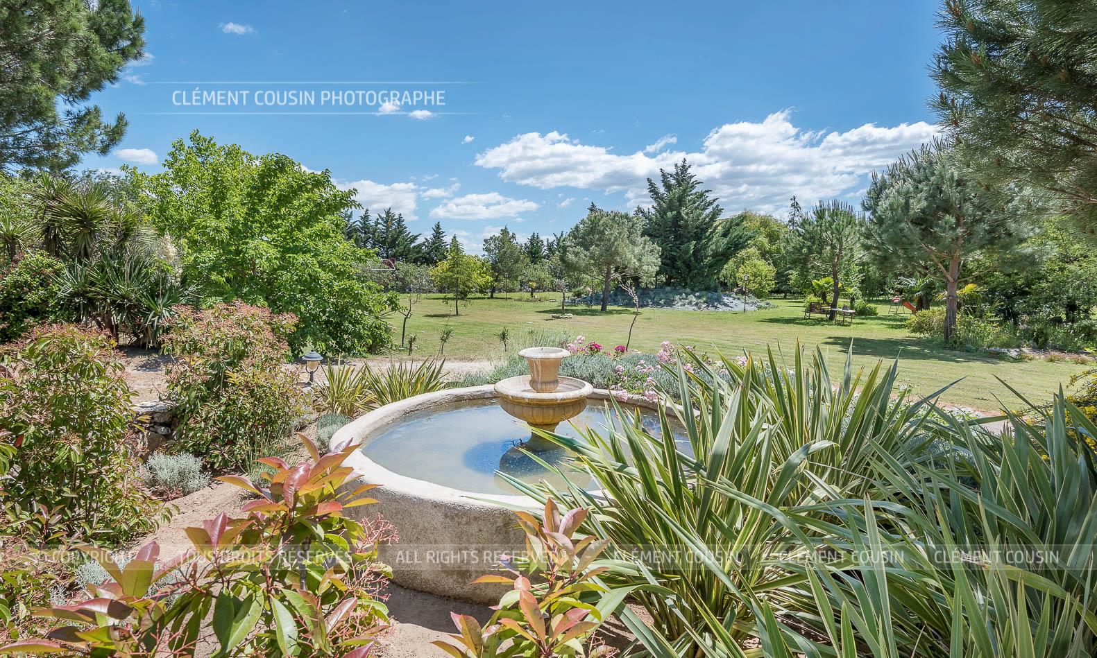 Mas de la montille piscine vignes aiguemortes-3.jpg