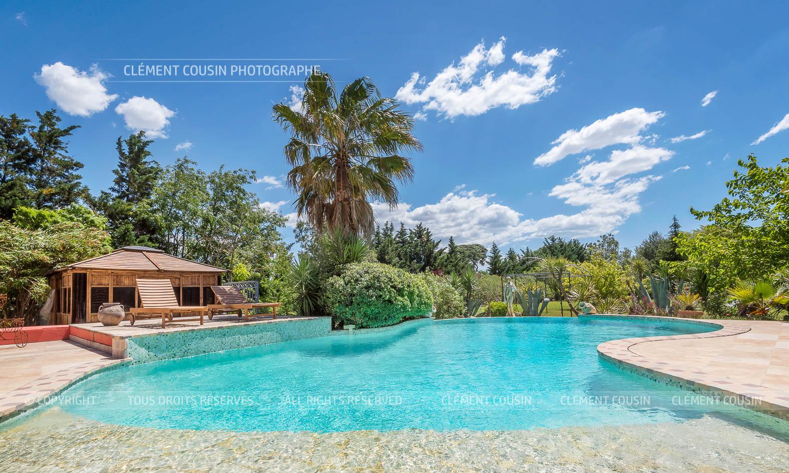 Mas de la montille piscine vignes aiguemortes-12.jpg