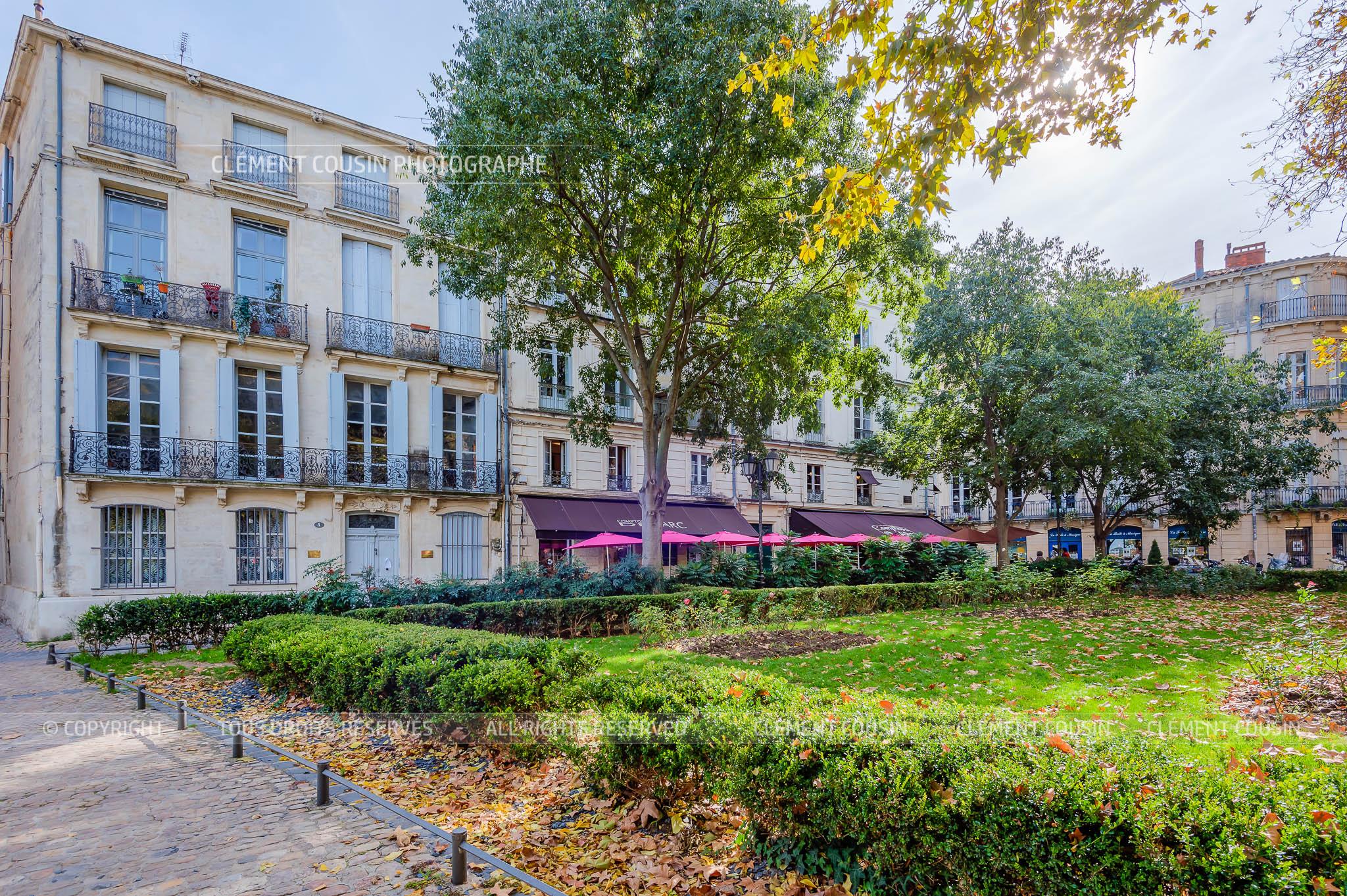 mas saint-come-appt place canourgue montpellier-1.jpg