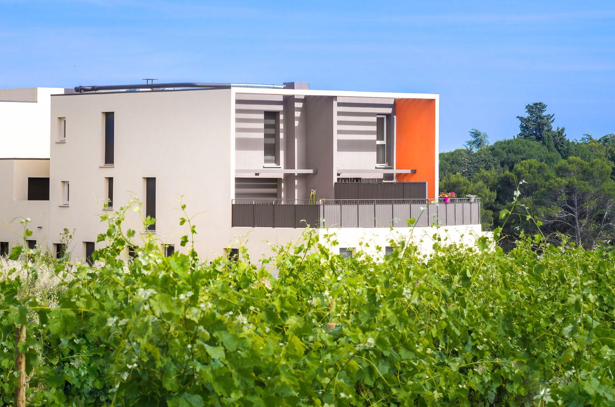 Villa Reglisse - Montpellier Grisettes - M&A Promotion-1.jpg