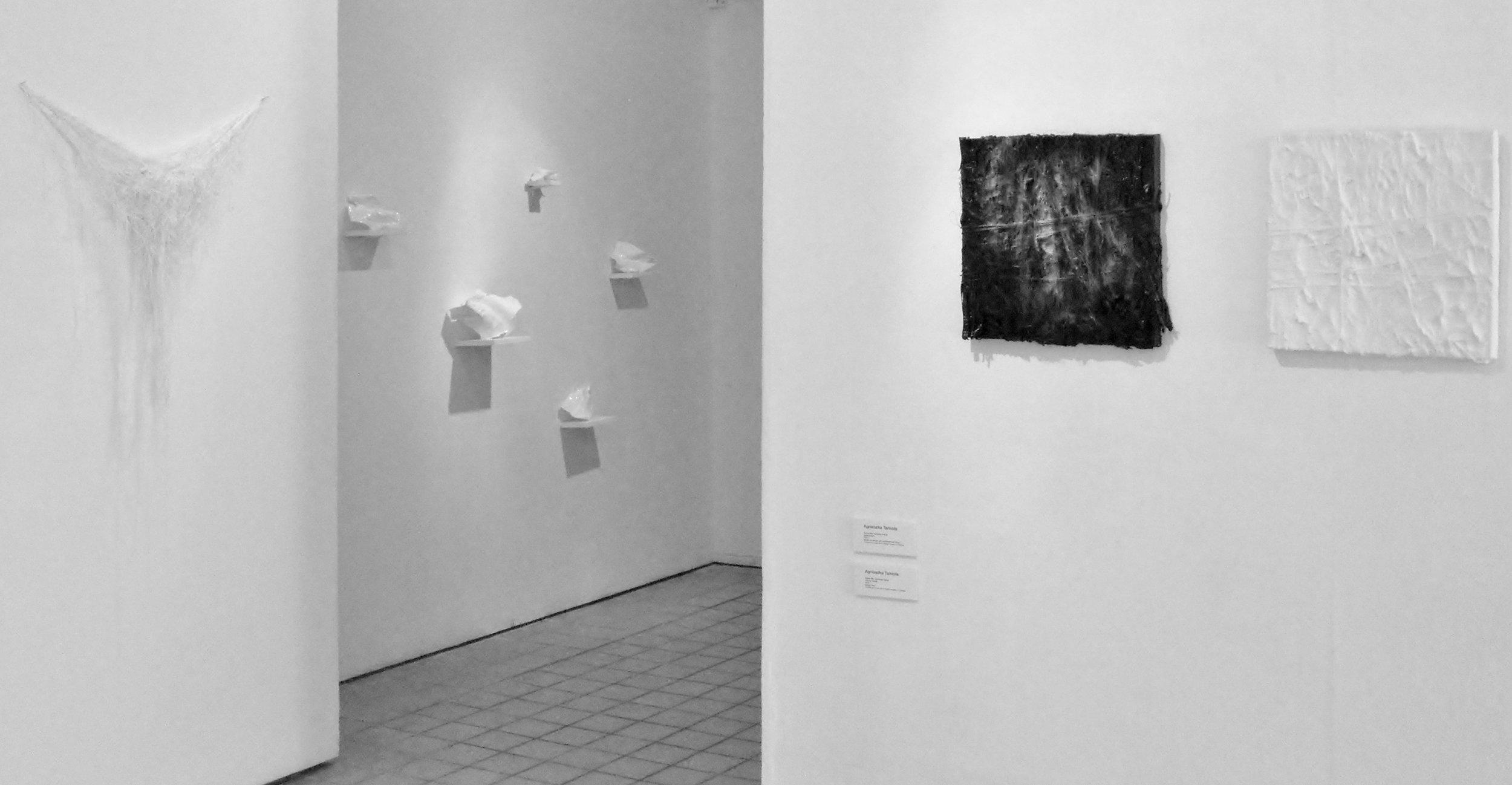 Vanishing Voices I  Exhibition View, 2012
