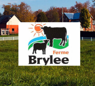 Brylee logo