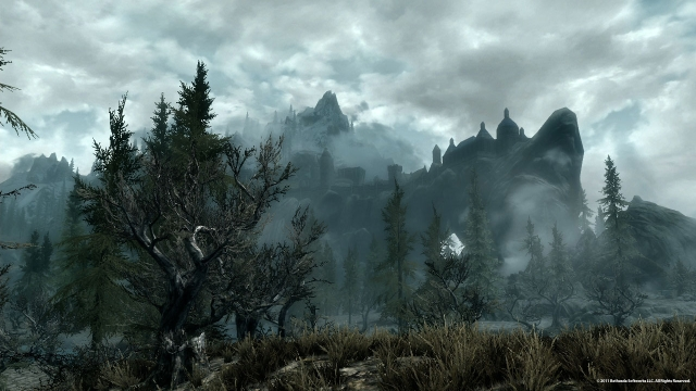 Skyrim    by Bethesda Game Studios