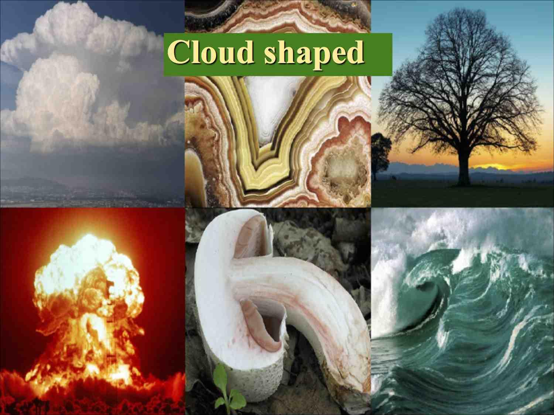Patterns in NaturePDC2014 5 L.jpg