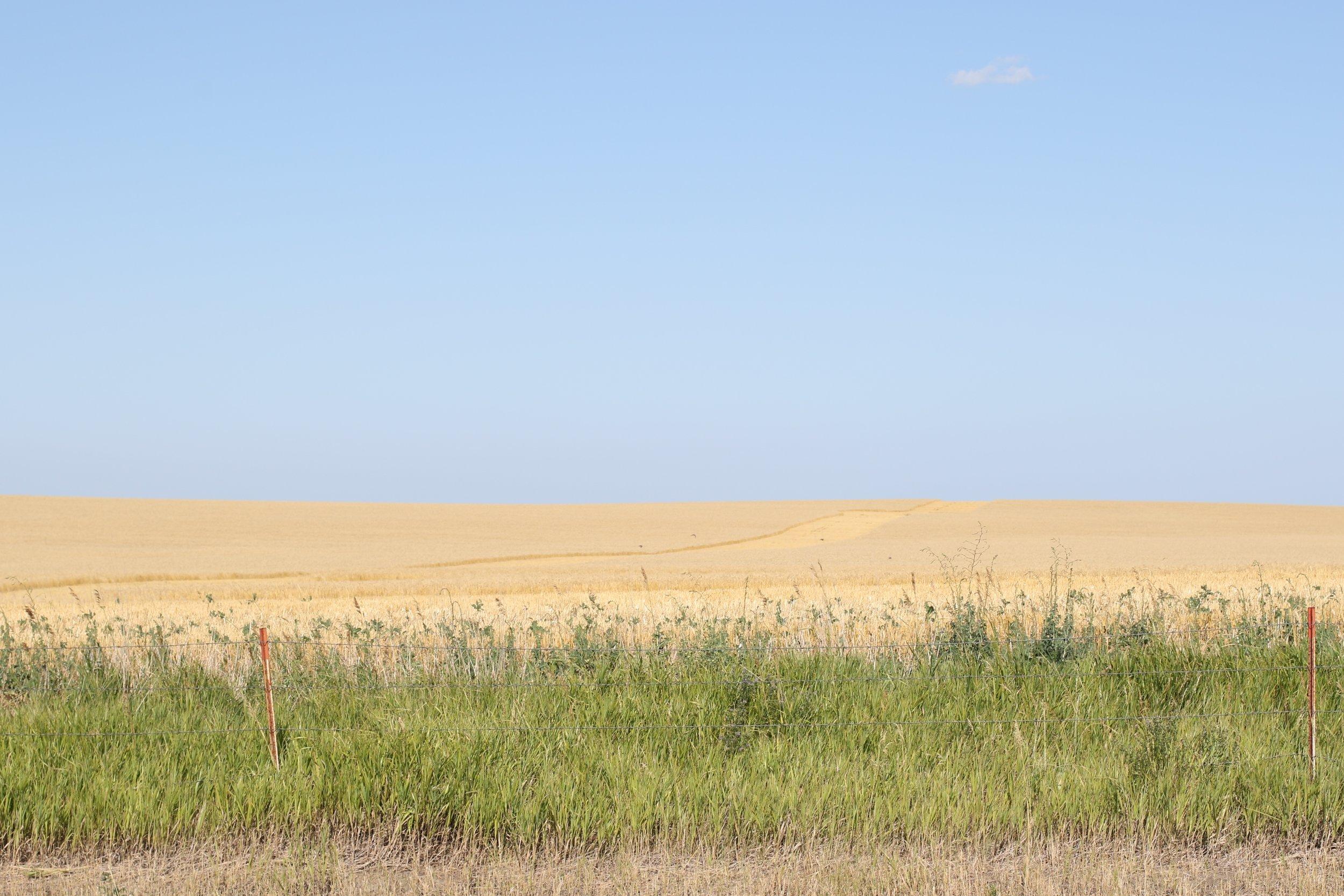 South Dakota 8.jpg