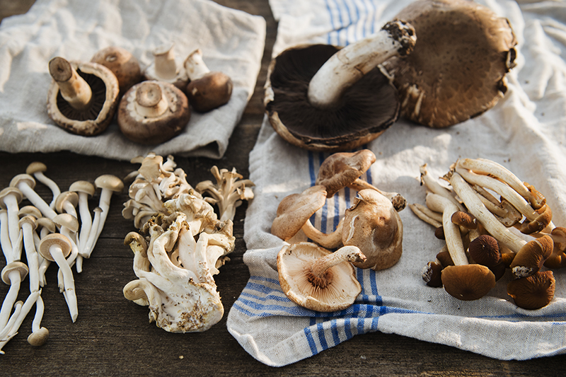 There are many types of mushrooms - evidently about 10,000 known species in North America alone! - but here are just a few from our local market, clockwise from top left: Cremini, Portobello, Hypholoma, Shiitaki, Maitaki (or Hen of the Wood), and Enoki.