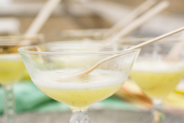 tequila soaked sorbet - chasing saturdays