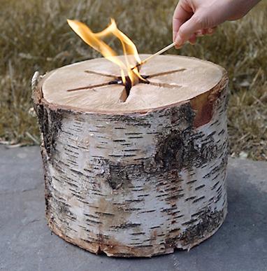 bonfire log - chasing saturdays