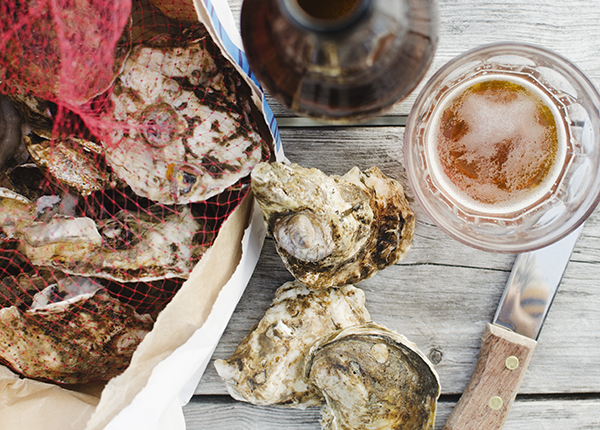 oysters! - chasing saturdays