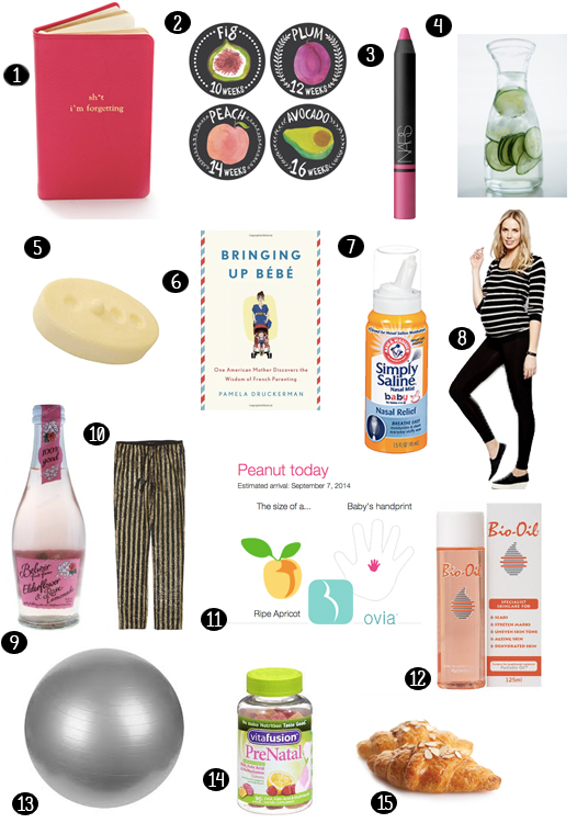 pregnancy survival items and guide - chasing saturdays