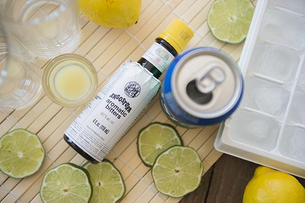 lemon, lime & bitters - chasing saturdays
