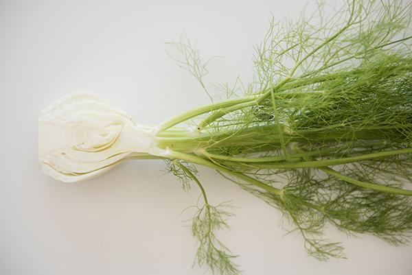 fresh ingredient: fennel - chasing saturdays