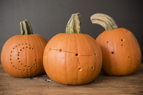 starry pumpkins - chasing saturdays