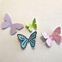 Butterflies: Interactive Exhibit