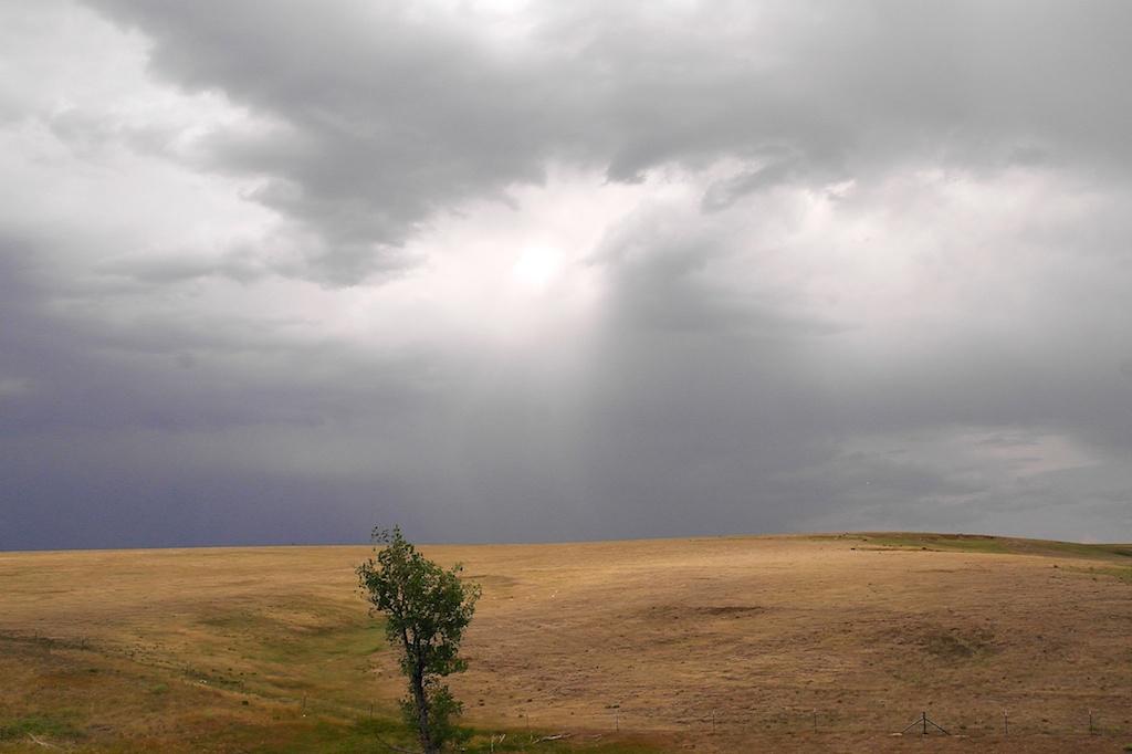 Eastern_Colorado_2012-07-03_16-33-35_171©MaggieLynch2012.jpg